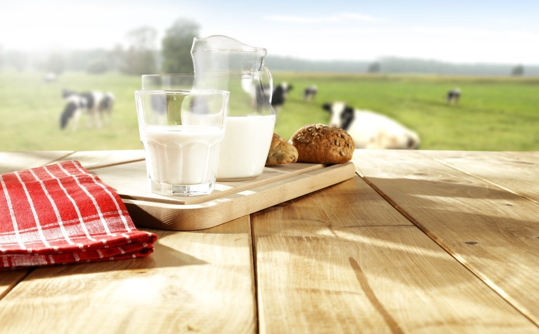 Calorías de la leche de vaca