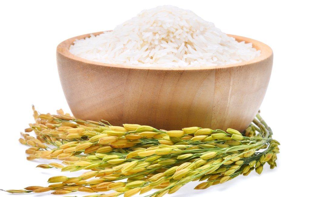 ¿Qué engorda más, el arroz o la pasta?
