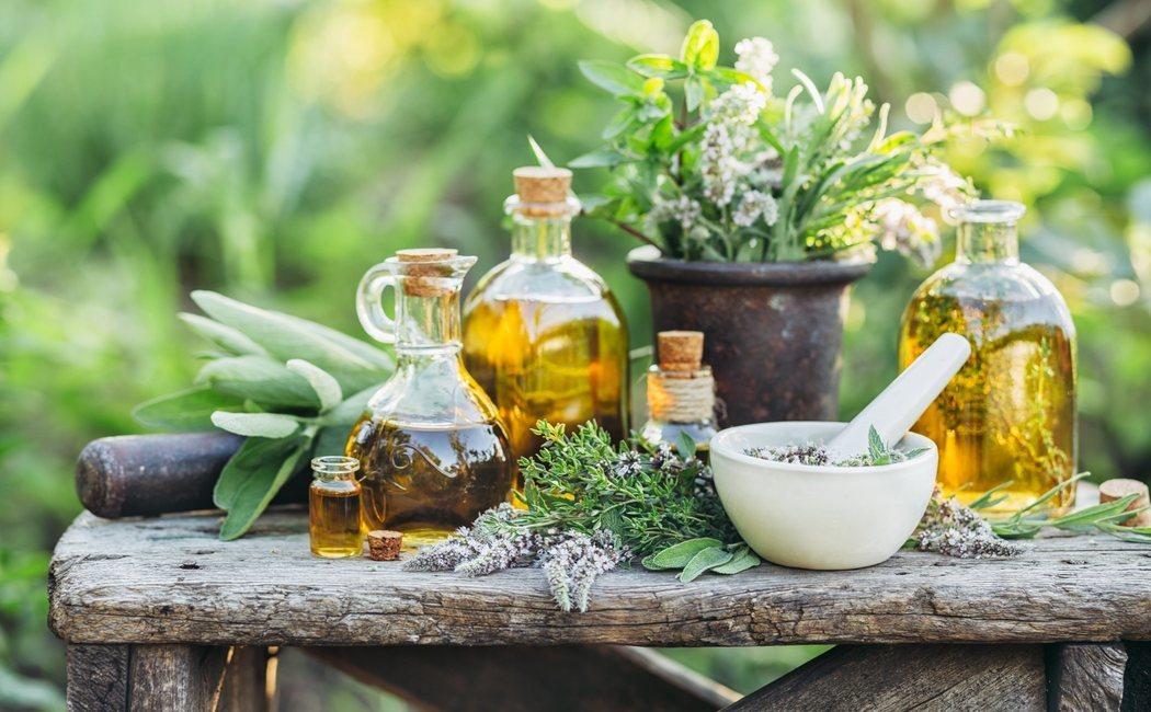 5 plantas medicinales para combatir la fatiga