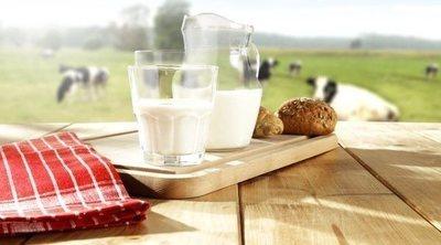 ¿Qué tipo de leche engorda más?