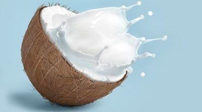 Calorías del coco