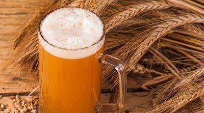 Propiedades de la levadura de cerveza