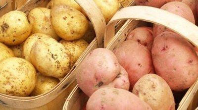 ¿Qué engorda más, la patata o la batata?