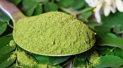 6 beneficios de la moringa