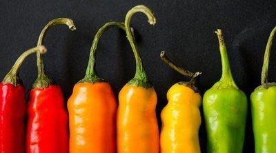 Tipos de pimientos y valor nutricional
