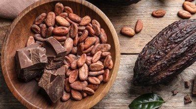 Propiedades y beneficios de tomar cacao puro